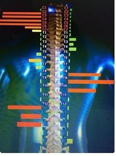 Avaliação da coluna por Thermo-Scan